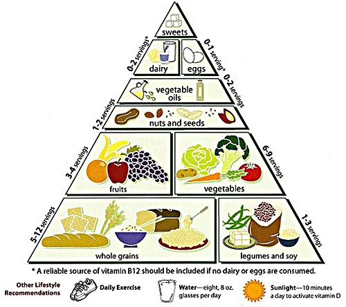 vegetarian food pyramid from Loma Linda University