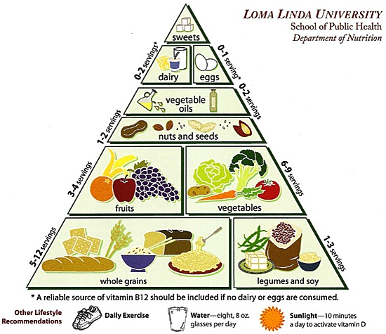 vegetarian food pyramid explained
