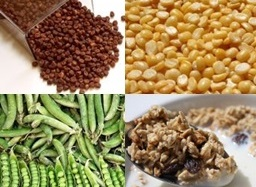 Vegetarian Protein Sources: Beans, Bulgar, Peas, Granola