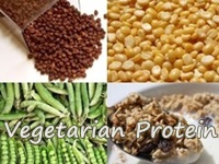 sources of vegetarian protein