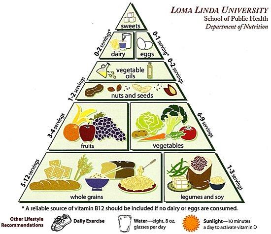 vegetarian food pyramid explained