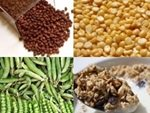 vegetarian protein sources